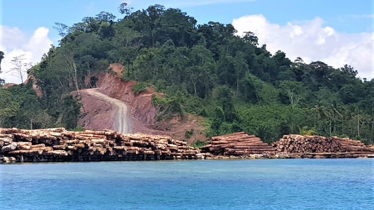 Topol log pond, timber ready for export in Papua New Guinea